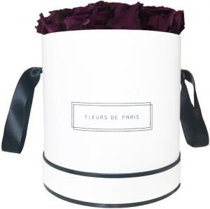 Infinity Collection Velvet Plum Large weiss - rund