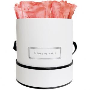 Petite Rose Edition Pink Apricot  weiss - rund