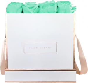 The Rosé Gold Collection Minty Green Large weiss - eckig