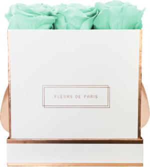 The Rosé Gold Collection Minty Green Medium weiss - eckig