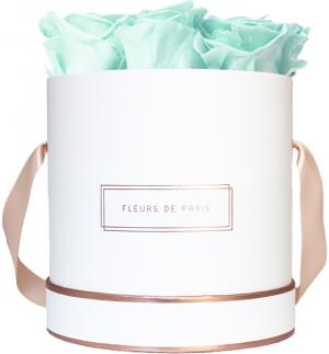 The Rosé Gold Collection Minty Green Medium weiss - rund
