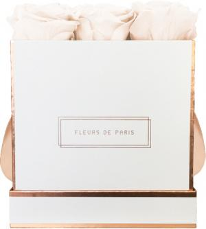 The Rosé Gold Collection Pastelle Peach Medium weiss - eckig
