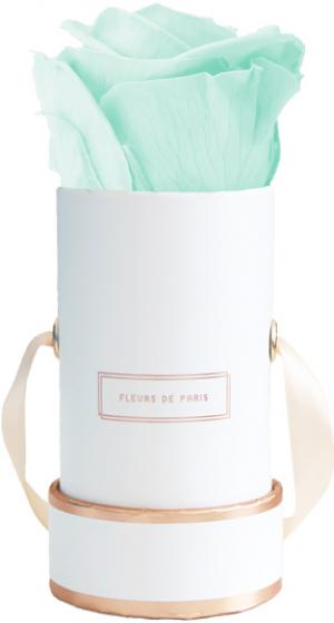 The Rosé Gold Collection Minty Green Mini weiss - rund