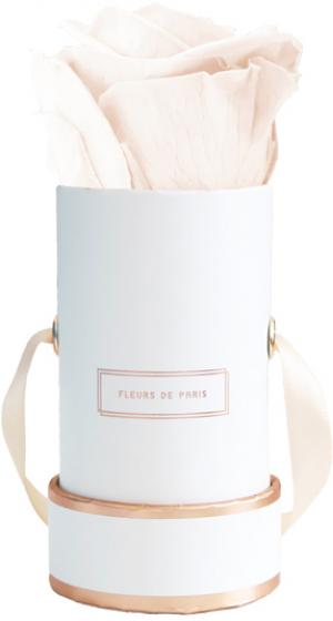 The Rosé Gold Collection Pastelle Peach Mini weiss - rund