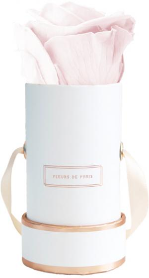The Rosé Gold Collection Pastelle Pink Mini weiss - rund