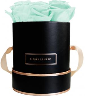 The Rosé Gold Collection Minty Green Small schwarz - rund