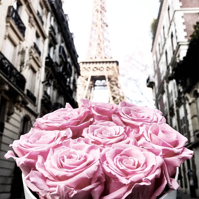 En commun Real Roses that last for Years | FLEURS DE PARIS &NG_94